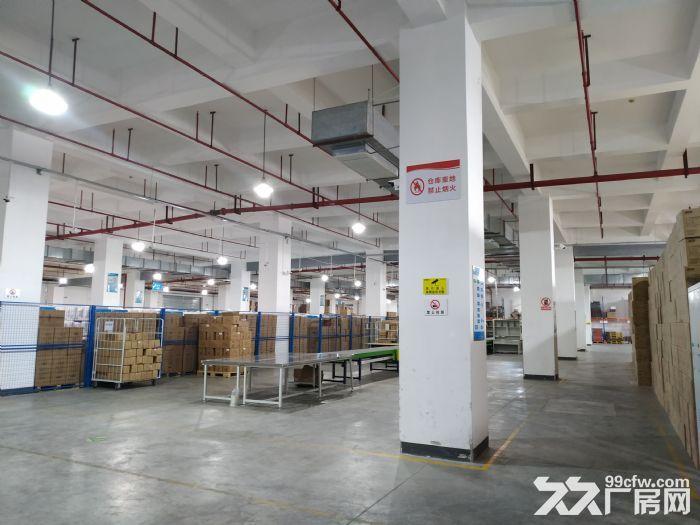 S中南高科长三角多个园区独栋厂房出售800平起售独栋三层首层8.1米,-图(2)