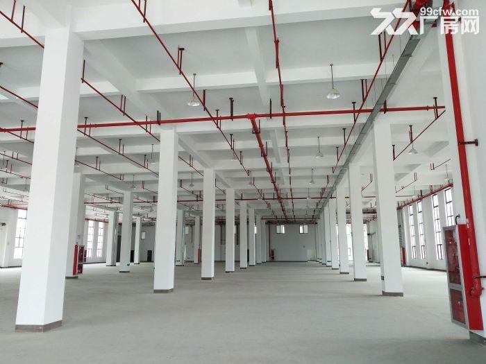 w中南高科长三角多个园区独栋厂房出售800平起售独栋三层首层8.1米,-图(1)