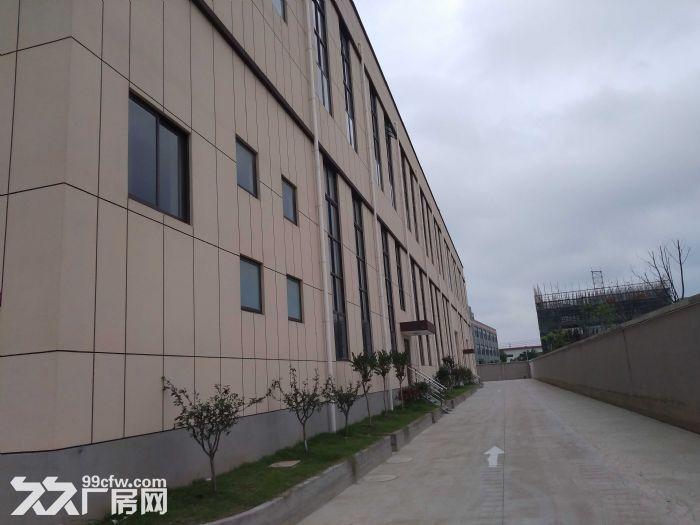 k中南高科长三角多个园区独栋厂房出售800平起售独栋三层首层8.1米,-图(1)