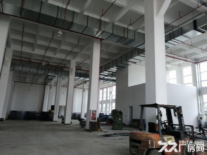 H中南高科长三角多个园区独栋厂房出售800平起售独栋三层首层8.1米-图(2)