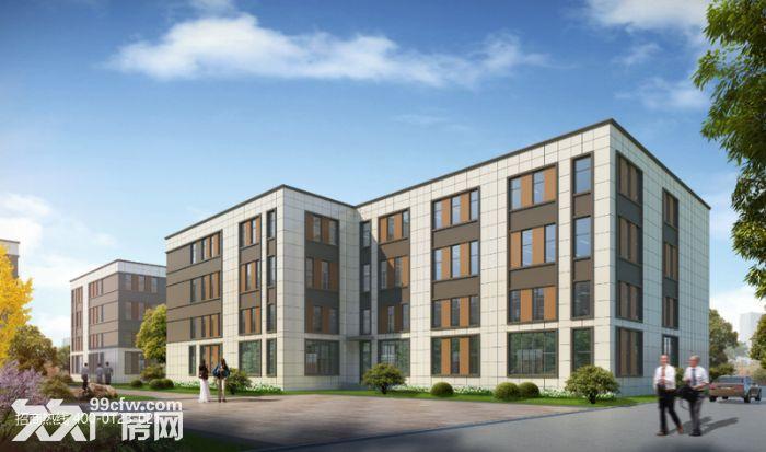 k中南高科长三角多个园区独栋厂房出售800平起售独栋三层首层8.1米,-图(5)