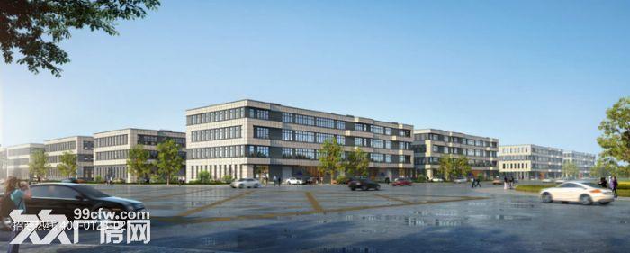 k中南高科长三角多个园区独栋厂房出售800平起售独栋三层首层8.1米,-图(8)