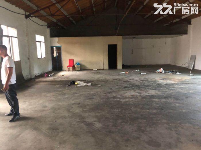 厂房招租现有位于东青白茅村厂房出租-图(2)