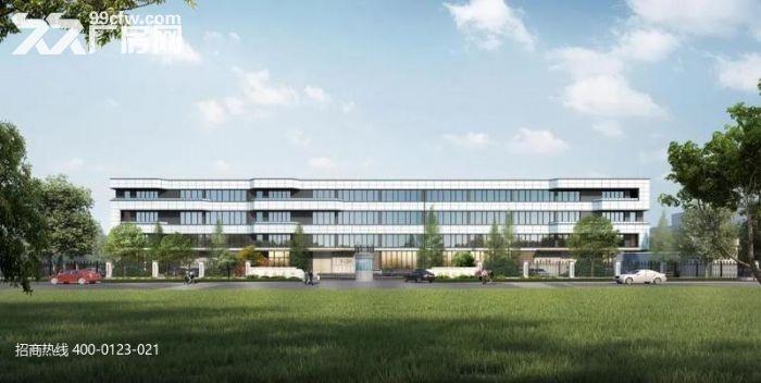 H中南高科长三角多个园区独栋厂房出售800平起售独栋三层首层8.1米-图(6)