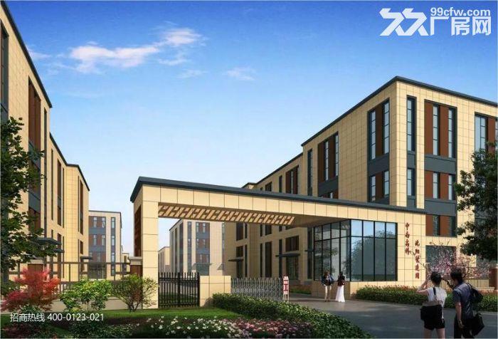 Z中南高科长三角多个园区独栋厂房出售800平起售独栋三层首层8.1米-图(3)