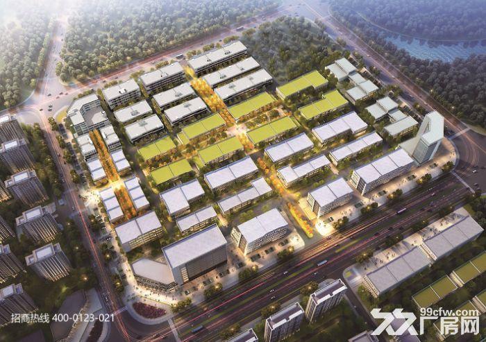 Z中南高科长三角多个园区独栋厂房出售800平起售独栋三层首层8.1米-图(6)