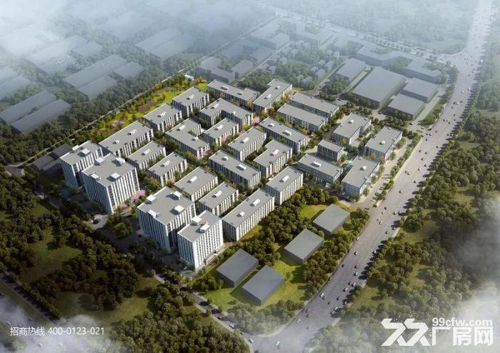 Z中南高科长三角多个园区独栋厂房出售800平起售独栋三层首层8.1米-图(7)