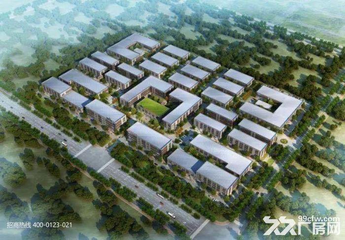 DD中南高科长三角多个园区独栋厂房出售800平起售独栋三层首层8.1米-图(2)