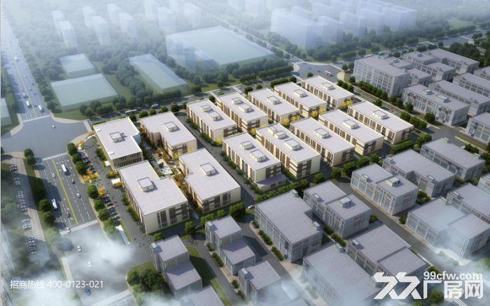 DD中南高科长三角多个园区独栋厂房出售800平起售独栋三层首层8.1米-图(3)