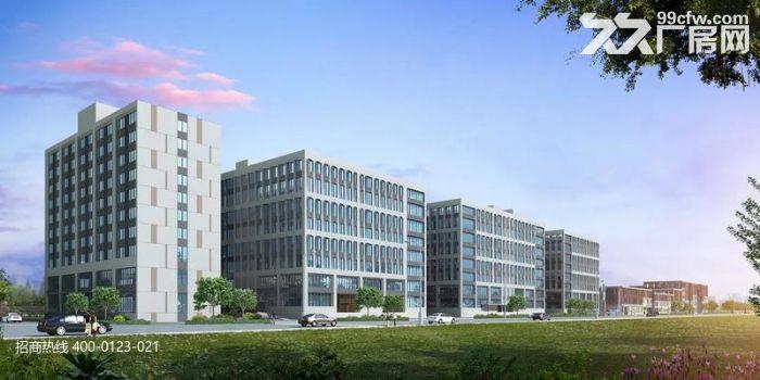 DD中南高科长三角多个园区独栋厂房出售800平起售独栋三层首层8.1米-图(5)