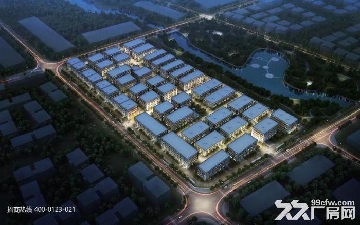 DD中南高科长三角多个园区独栋厂房出售800平起售独栋三层首层8.1米-图(6)
