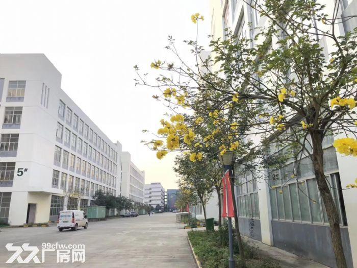 南宁市国家级东盟经开区单层多层厂房1000~10000平方出租-图(1)