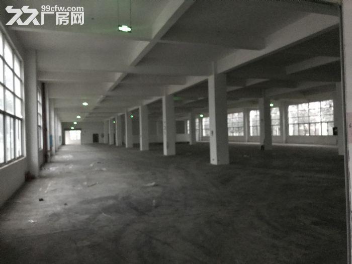 南宁市国家级东盟经开区单层多层厂房1000~10000平方出租-图(2)