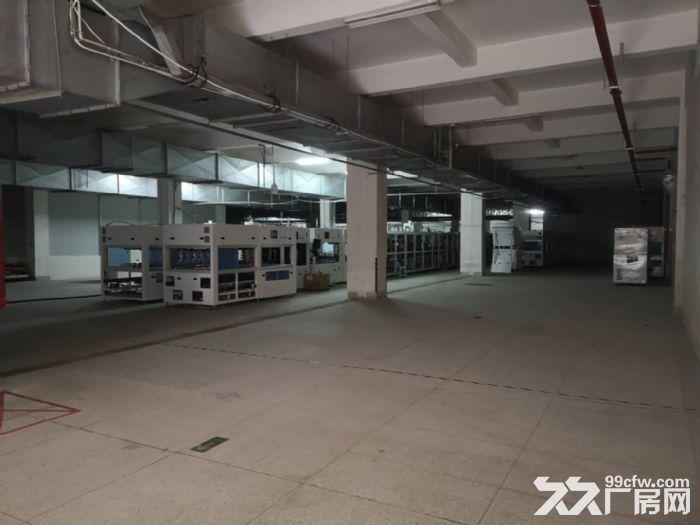 吴中越溪旺山工业园底层3900㎡高品质厂房出租-图(5)