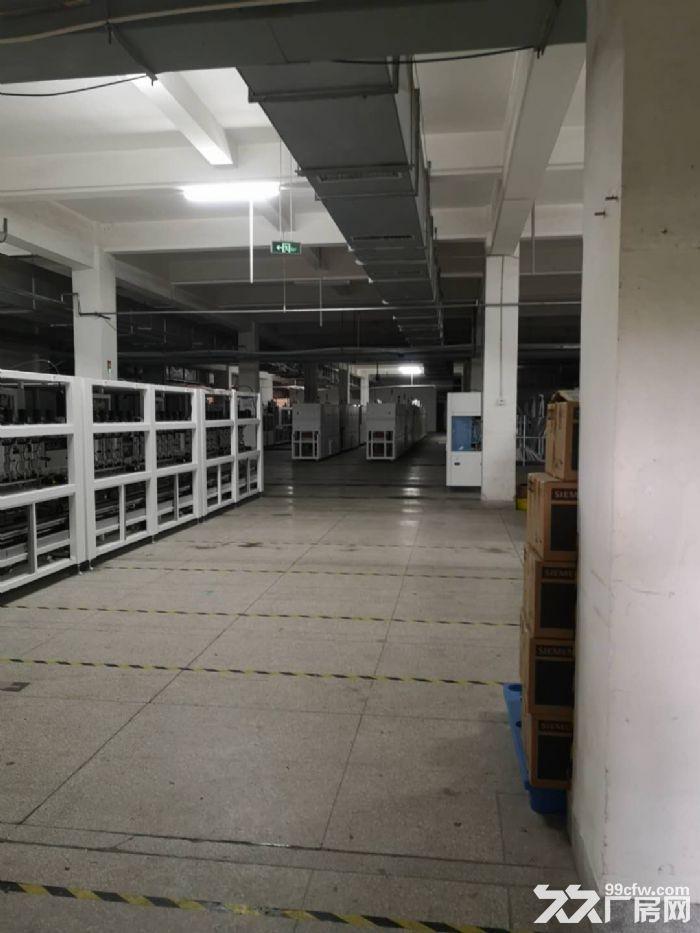吴中越溪旺山工业园底层3900㎡高品质厂房出租-图(8)