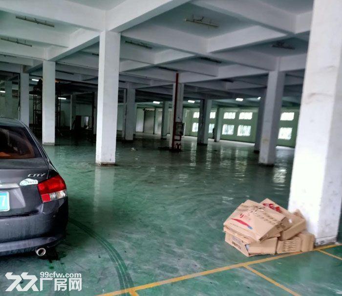 千灯双层标准厂房出租总面积12000平米可分租-图(2)