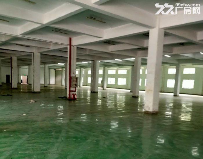 千灯双层标准厂房出租总面积12000平米可分租-图(3)