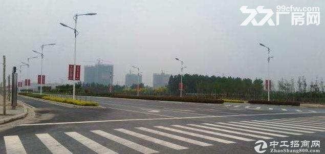南京江宁区国智能制造卫星导航电子信息汽车整体部件工业区土地出售-图(3)