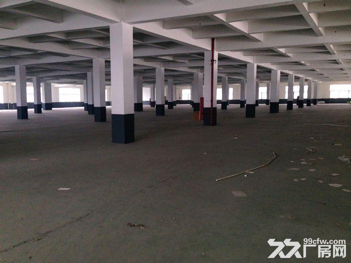 新区三楼900平米厂房出租-图(1)