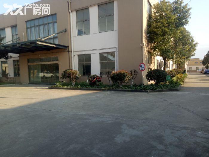 陆家金阳路独栋独院单层厂房1205平出租-图(1)