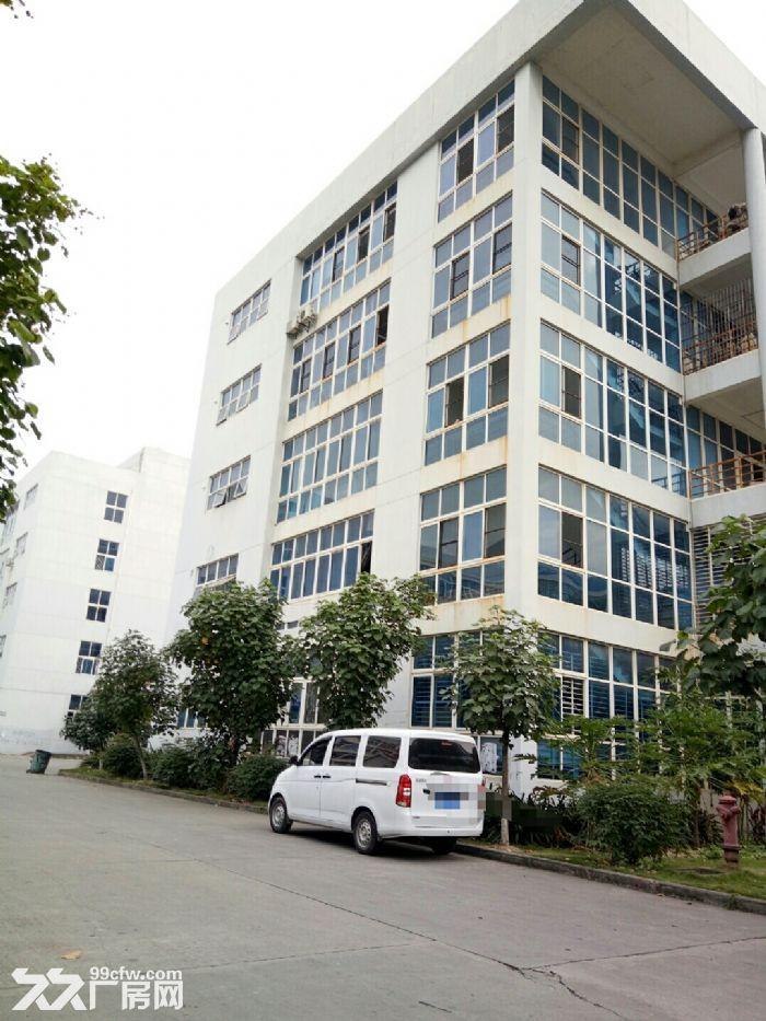 集美北区独门独院25000平米出租-图(1)