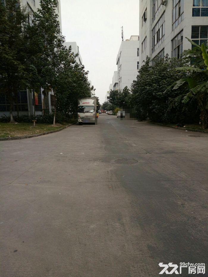 集美北区独门独院25000平米出租-图(4)