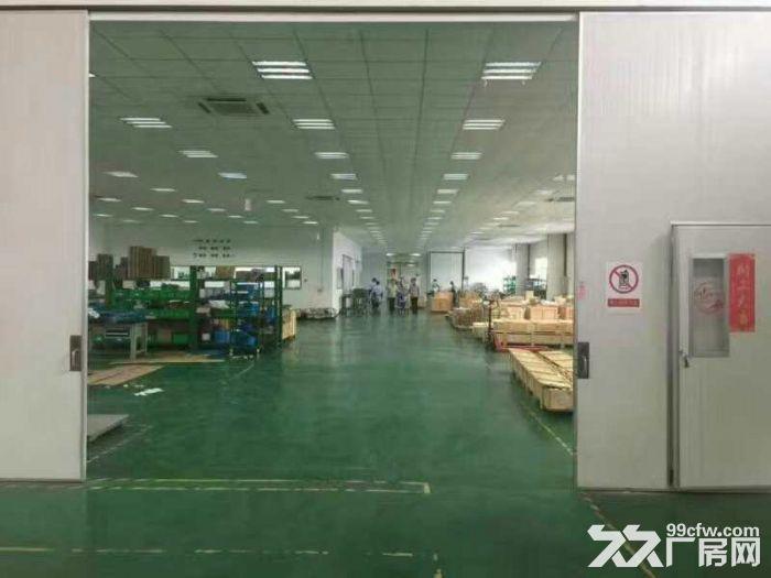 新区独门独院6500平米单层厂房出租-图(2)