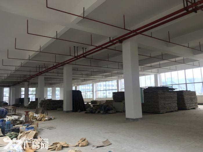 东盟经开区各类规格、面积单层钢结构厂房出租!-图(8)