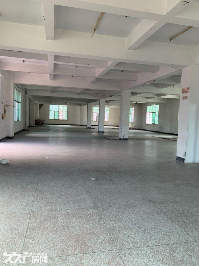 火炬工业区标准厂房四楼出租-图(2)