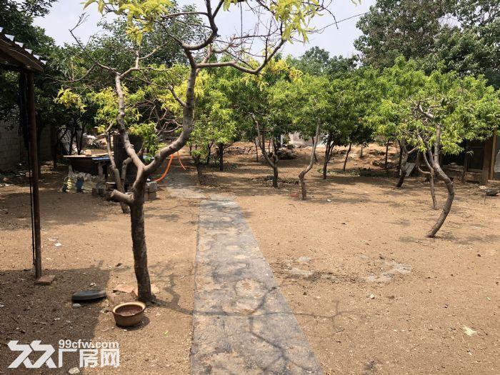 淄博张店玉黛湖附近独立院落出租-图(6)