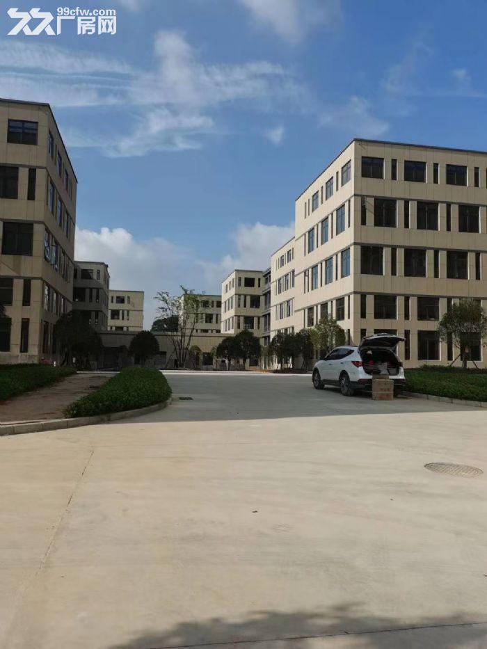 高新区麓谷四层独栋整栋出租形象好配套完善邻里好-图(6)