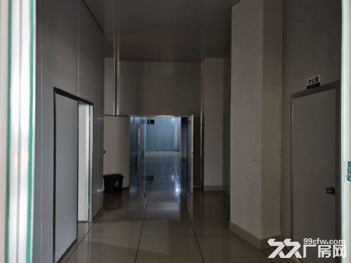 1300平方米精装修食品厂房,已经隔好彩钢板装好水电等-图(3)