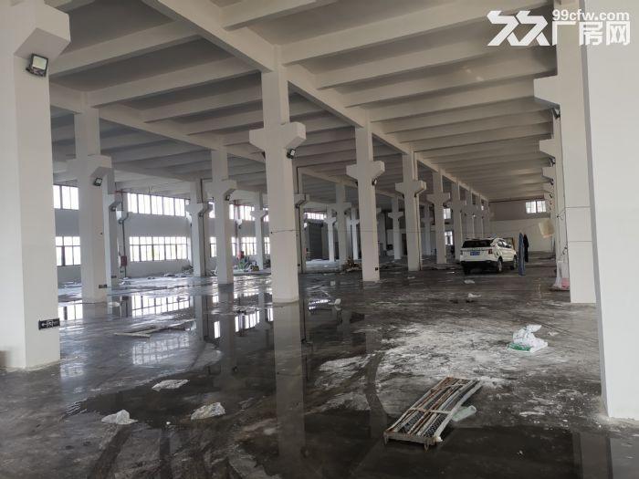 出售滨海土地20亩审批建筑28000㎡适合汽配鞋服包装等-图(2)