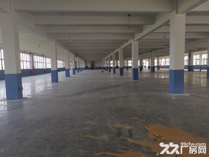 出售滨海土地20亩审批建筑28000㎡适合汽配鞋服包装等-图(3)