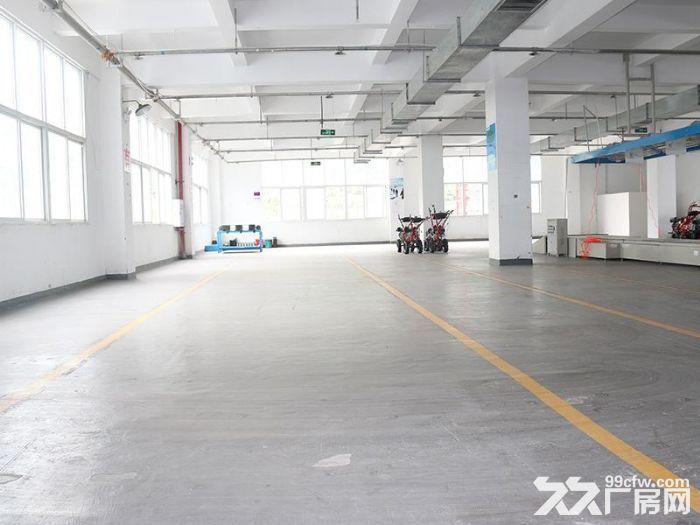 个人.上坊一楼1000平米,一栋2500平米仓库出租-图(1)