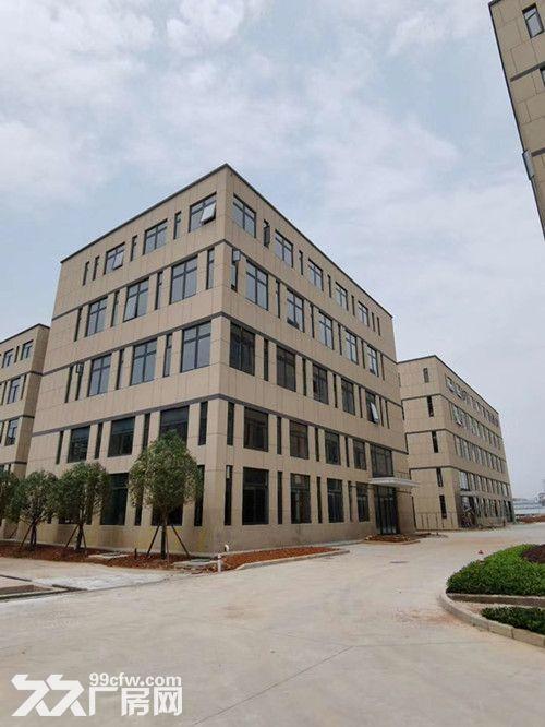 高新区5000平四层独栋形象好首层7.2米层高配套完善-图(2)