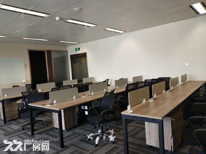 (金桥华虹创新园)锦绣申江,大独栋10000平可分割出租-图(3)