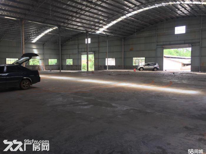 汽车南站红星机电市场标准钢结构厂房仓库急租可做加工可仓储配送-图(6)