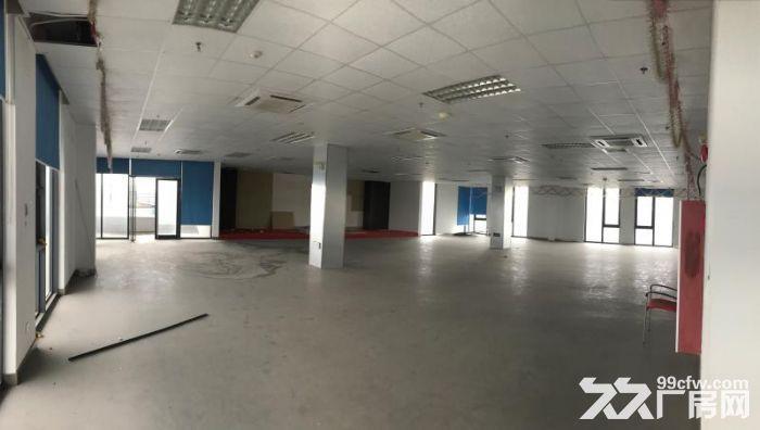 浦江漕河泾园区,一楼460平,楼上200平多间,研发办公展示-图(3)