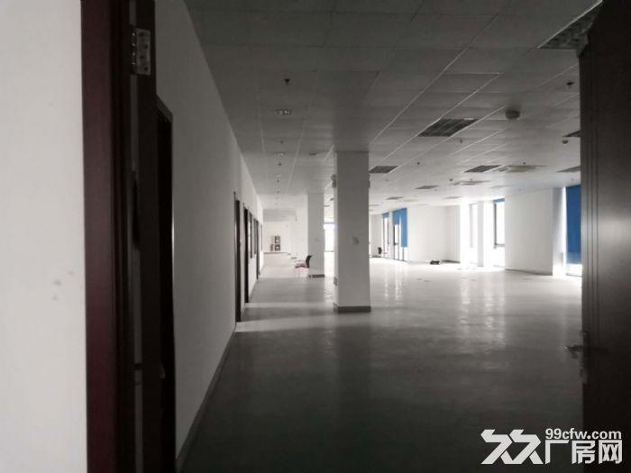 浦江漕河泾园区,一楼460平,楼上200平多间,研发办公展示-图(5)