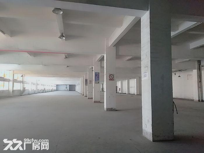 前山700平方一楼厂房出租带400平空地适合汽修-图(2)