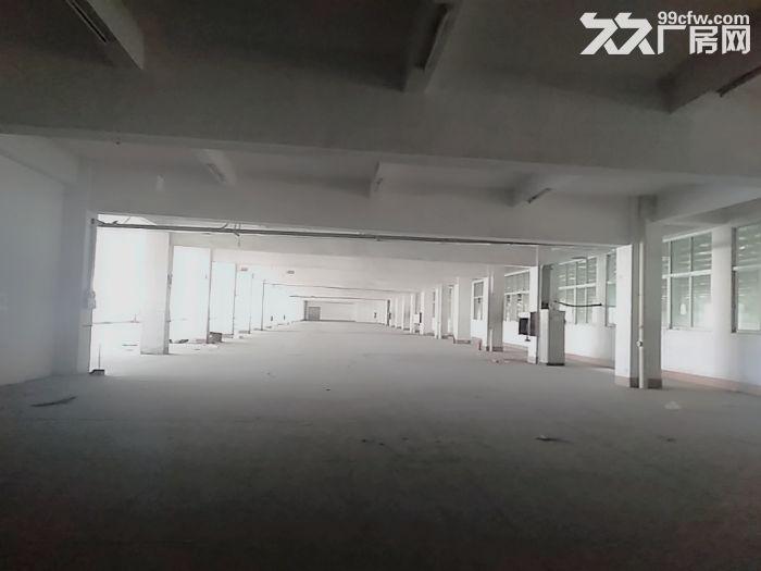 前山700平方一楼厂房出租带400平空地适合汽修-图(1)