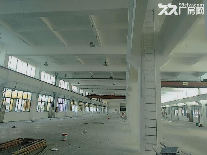 前山700平方一楼厂房出租带400平空地适合汽修-图(4)