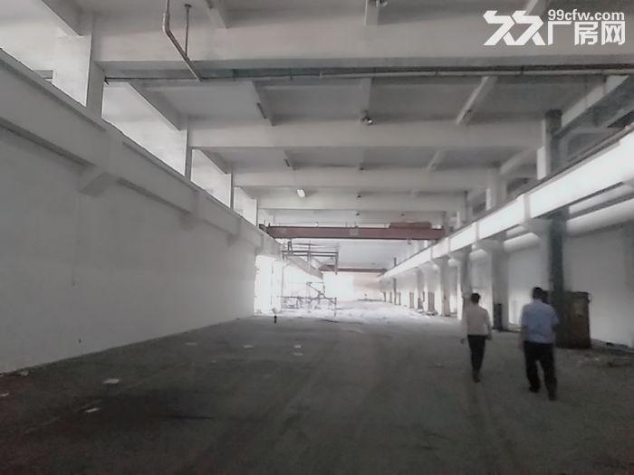 前山700平方一楼厂房出租带400平空地适合汽修-图(3)