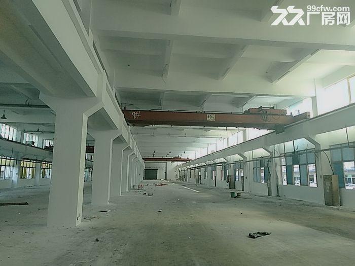 前山700平方一楼厂房出租带400平空地适合汽修-图(5)