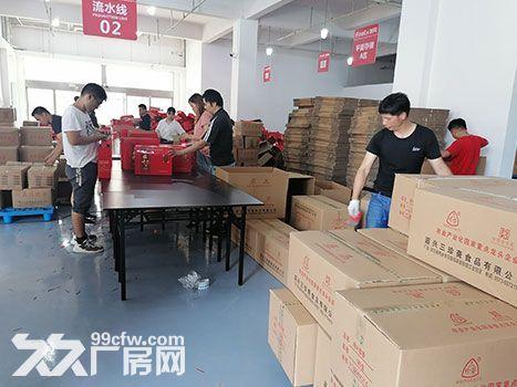 南宁电商仓库出租,专业团队代发售后,价格可谈-图(3)