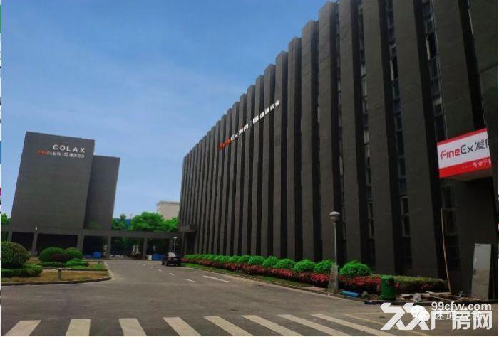 南宁电商仓库出租,专业团队代发售后,价格可谈-图(5)