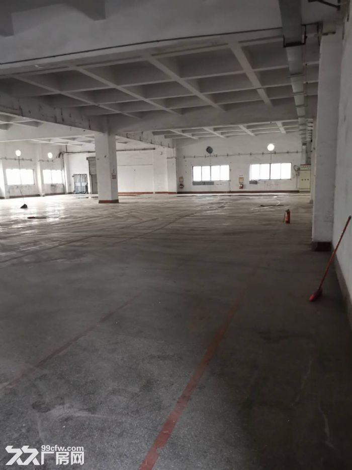 桂城平洲16000平方红本楼层仓库出租,适合电商、家电、中转、食品、快消等行业-图(4)