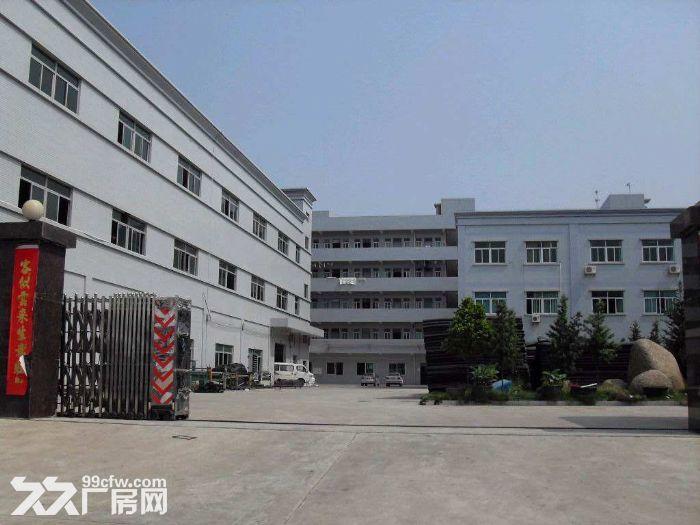 金湾,红旗,南水,平沙10万平方厂房招租-图(1)