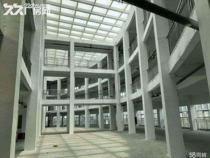 金湾,红旗,南水,平沙10万平方厂房招租-图(6)